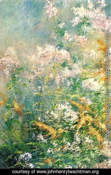 John Henry Twachtman - Meadow Flowers Aka Golden Rod And Wild Asters